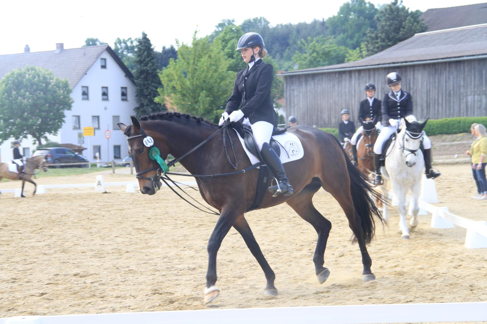 Turnier Obermünchen 10.05.18 Dressur-WB 244 E1, 6. Platz WN 6,7